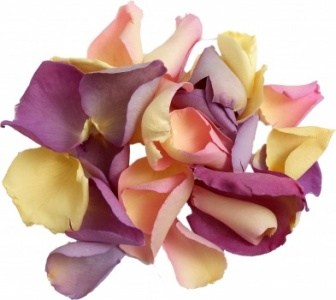 Sweet Dreams Rose Petal Mix