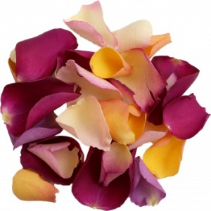Twilight Rose Petal Mix