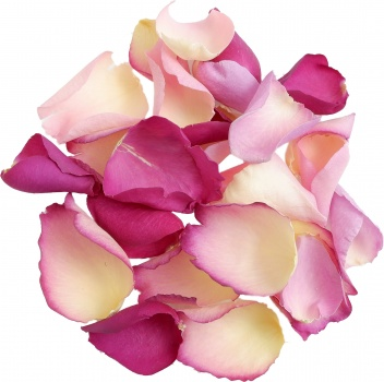 In the Pink Rose Petal Mix